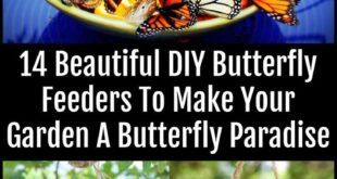 14 Beautiful DIY Butterfly Feeders To Make Your Garden A Butterfly Paradise