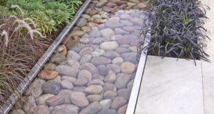 29 Best Water Garden Ideas (Our Favorites + Images!) 2020
