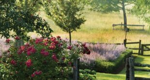 30 Charming Country GardensTo Inspire Your Own