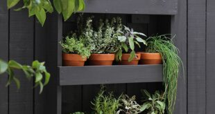 4 Ways To Make The Most Of Your Tiny Garden