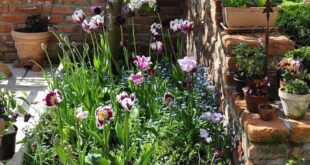 41 Small Flower Garden for Spring You Must Have - Gardening, plants, composting ...,  #compos...