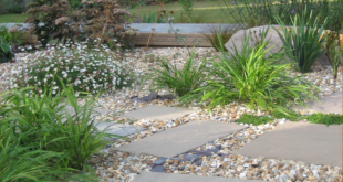 Creating Beautiful Gardens throughout Hampshire, Wiltshire, Berkshire, West Sussex and Dorset