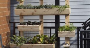 How to: Make a DIY Outdoor Living Plant Wall