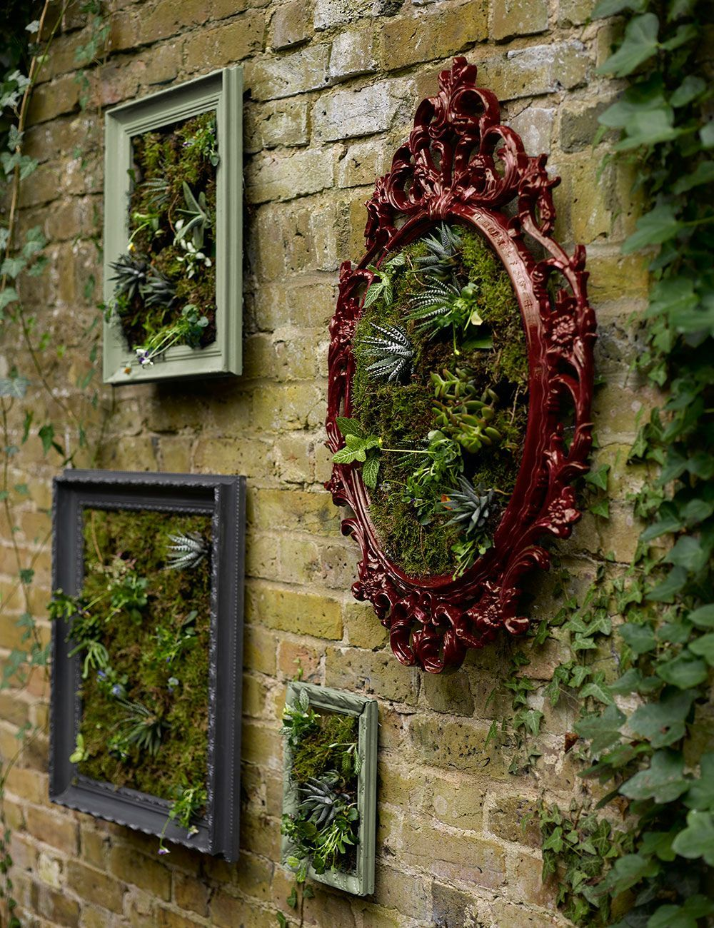 How to make a wall garden with succulent plants in picture frames | Ideal Home