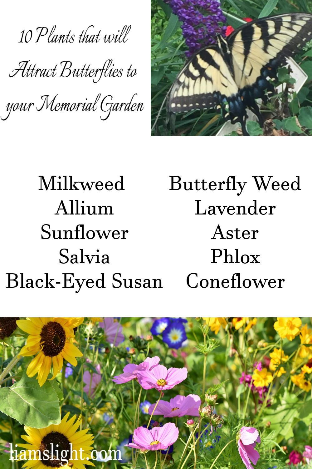 Memorial Garden - Planning and Planting your Perfect Space — LJG Candles & Sympathy Gifts
