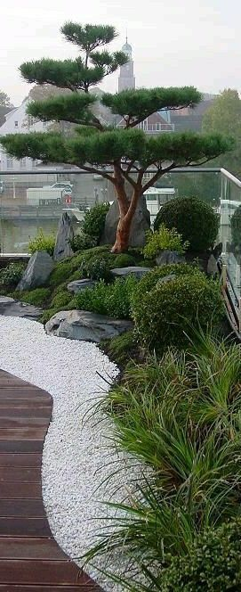 Pictures Of Japanese Water Gardens