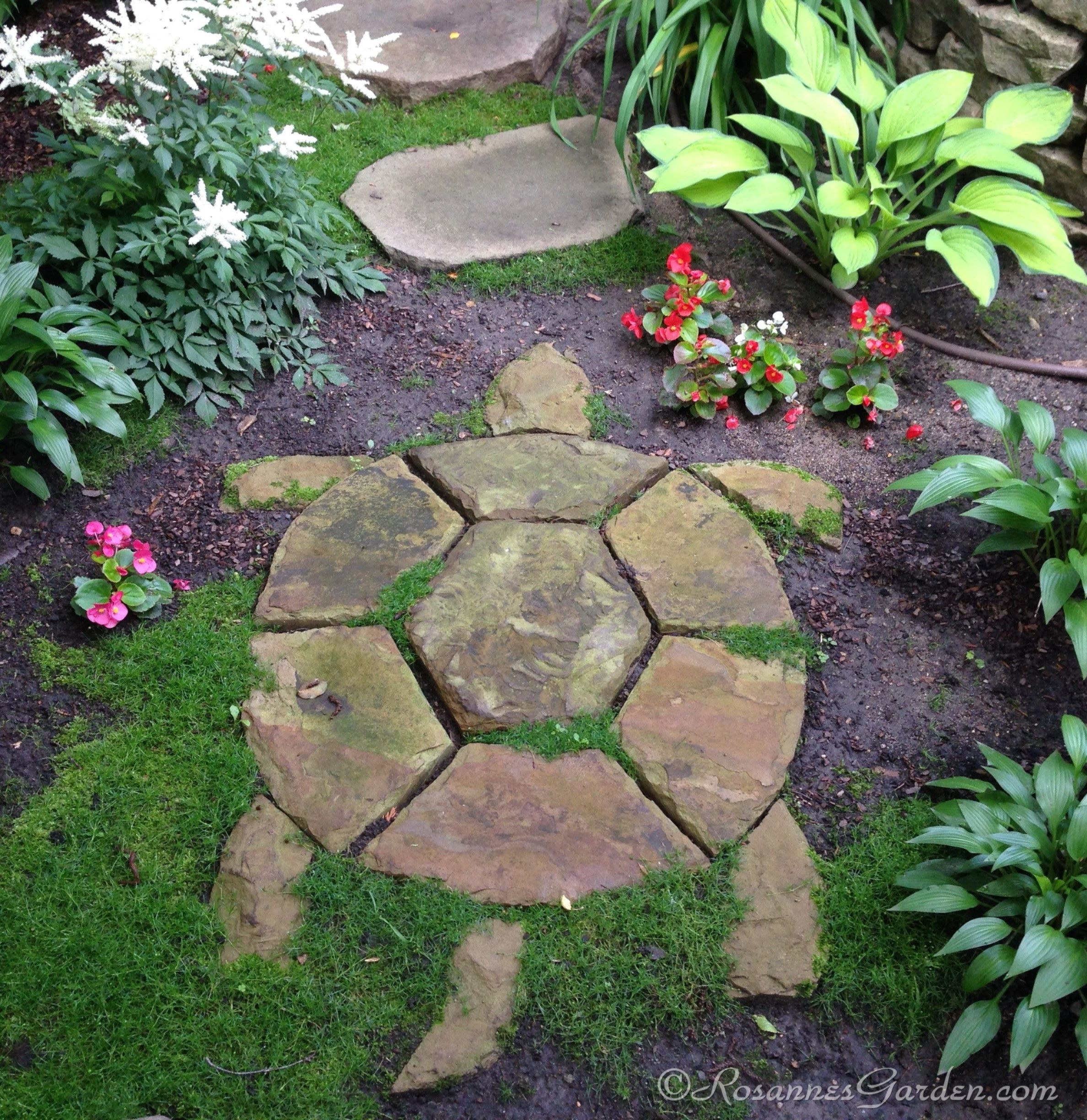 Turtle Stepping Stone in a Cottage Garden Path