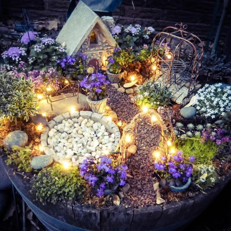 What Is A Fairy Garden/Everything You Need To know Fairy Gardens